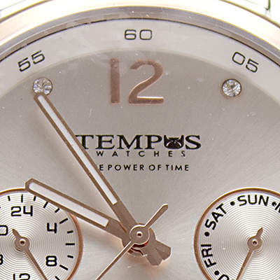 Reloj Tempus Watches para hombre de acero en dos tonos con fondo plateado detalle