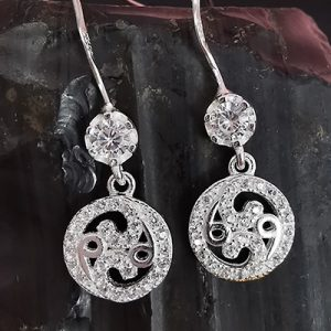 Aros con microcircones en plata 925